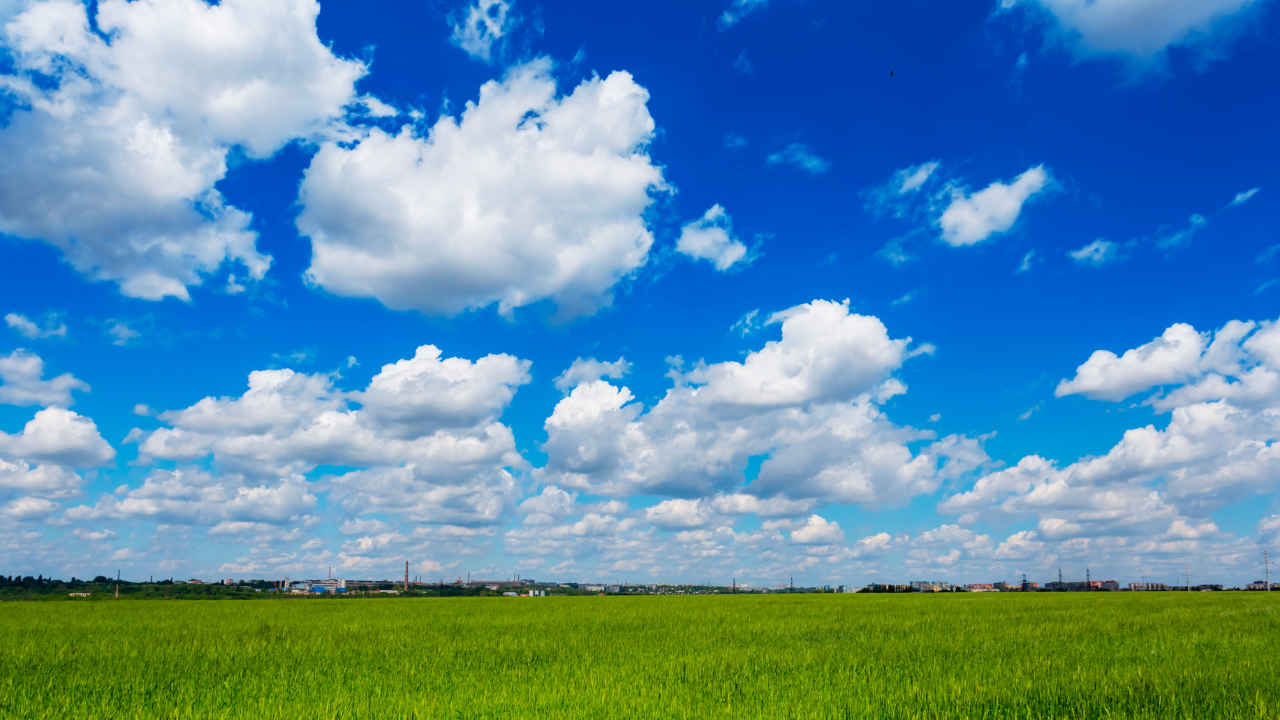 Cloud-Services-Grass-Field-Green